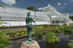 Conservatory & Botanical Gardens